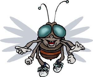 I know all - I see all thefly55@rocketmail.com