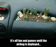 airbag garden
