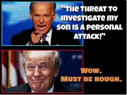 investigate my son