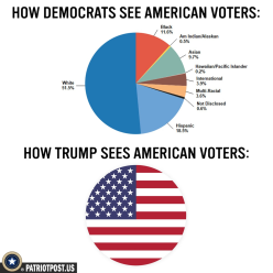How voters are seen
