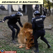 meanwhile in Baltimore