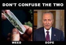 weed dope