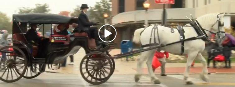 koos carriage