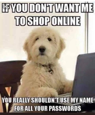 dogs name