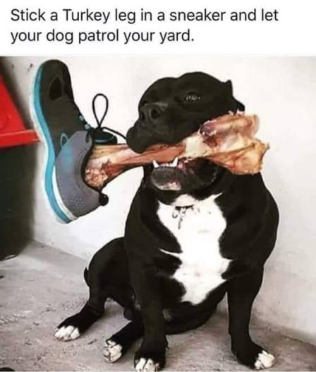 turkey leg patrol