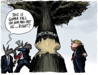 Impeachment_Tree_Small20191206023855