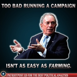 too bad Bloomberg
