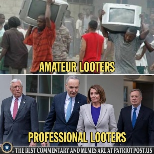 amateur looters