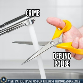 defund police like this