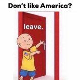 dont like america