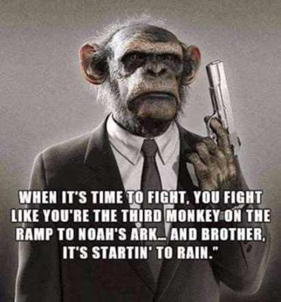 third monkey
